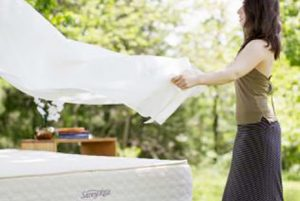 Savvy Rest Organic Cotton Sheets and Fall Giveaway