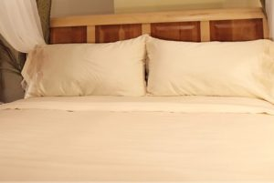 Sleep and Beyond Organic Sheets